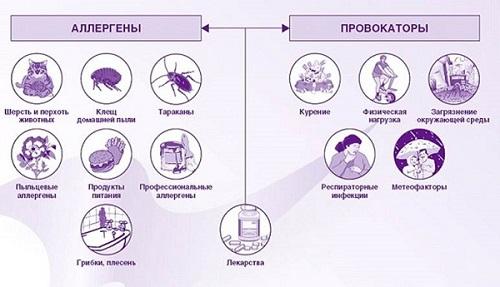Аллергический ринит - причины