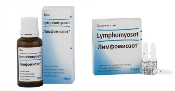 Капли Лимфомиозот